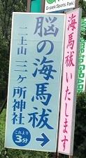 IMG_8772.JPG